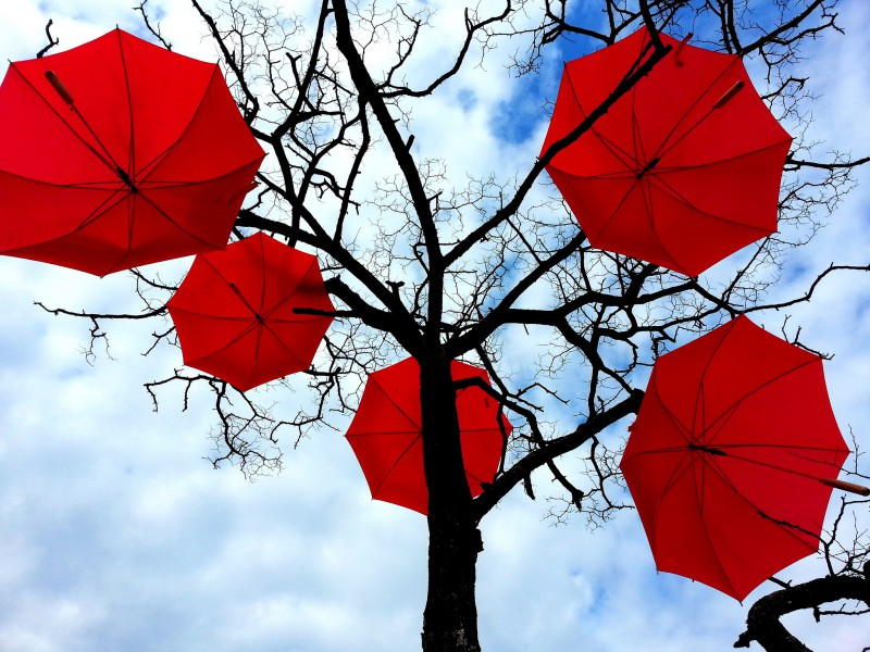 A leafless tree with red umbrellas hung on its branches.