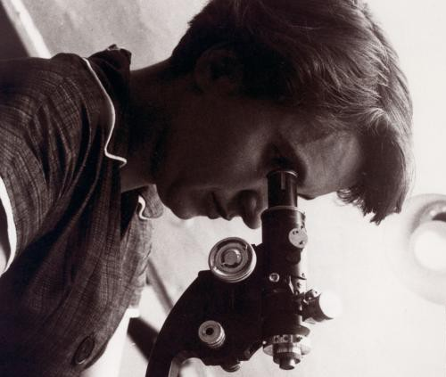 Rosalind Franklin - one of the world's most high-profile neglected women scientists.