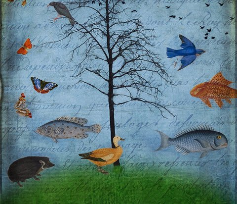 Painting of trees, birds, butterflies, fish superimposed on a piece of written paper.