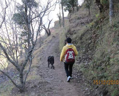 Girl in a sporty attire walking on an unmetalled road up a hill. A black dog walks a little ahead of her.