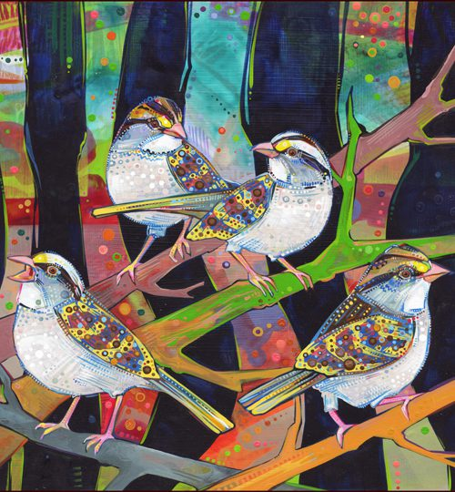 An illustration of three birds sitting on a tree branch. They all have colourful patterns drawn on them.