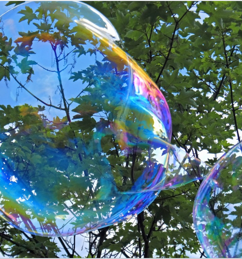 Picture of a large bubble against the backdrop of a clear sky and trees