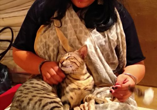 Image of Ritambhara Mehta petting a cat