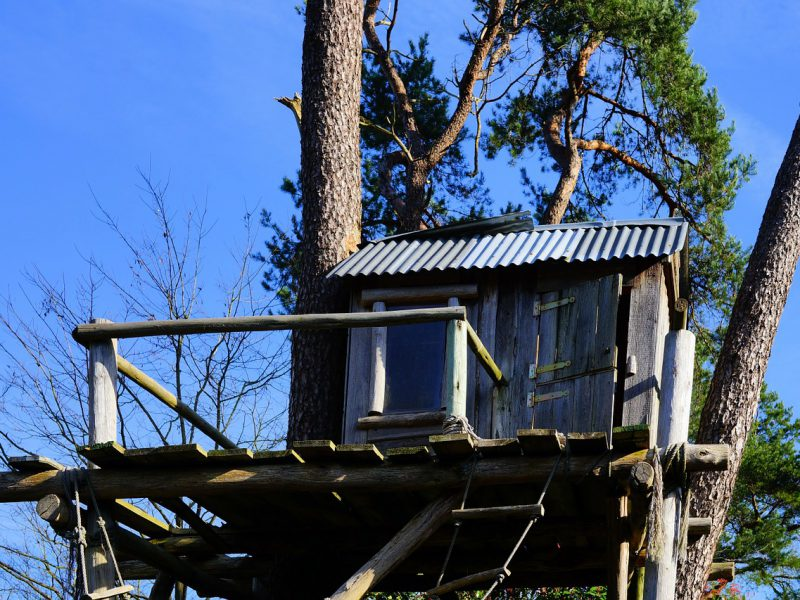 Picture of a treehouse