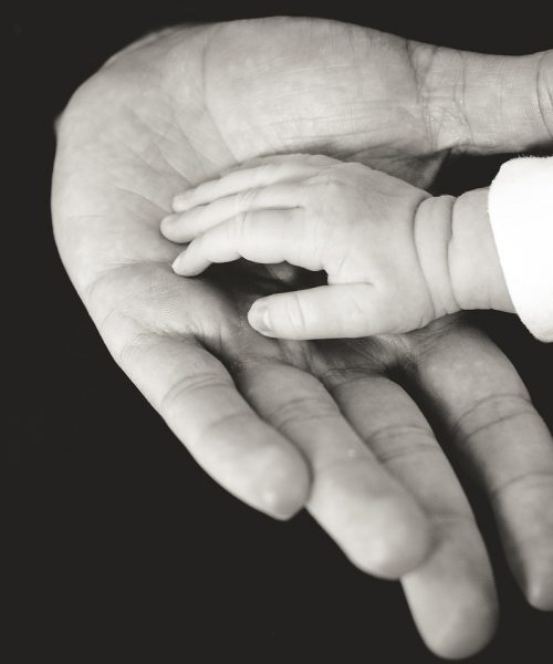 A black and white photograph of an infant's hand resting on an older individual's outstretched palm.