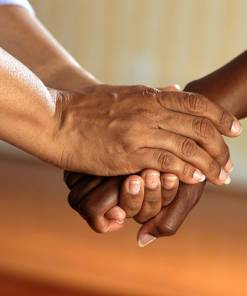 A photograph of two individual's hands, from their forearms. One of the individuals is clasping the others' hand in theirs.