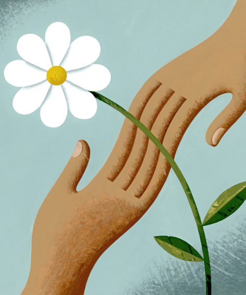Picture of a white flower on a blue background. Two hands can be seen touching each other behind the flower