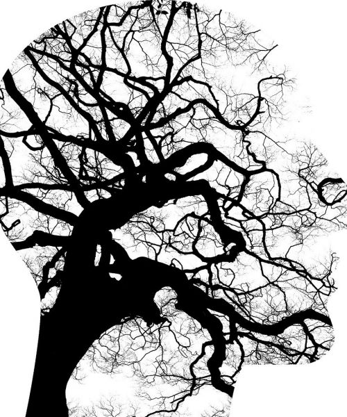 A graphic illustration with a black, inky tree with branches outlined by a silhouette of a face.