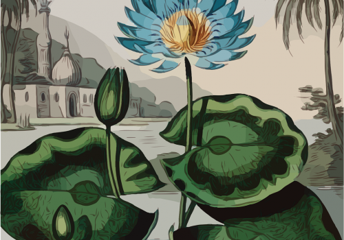 An illustration of a blue flower. The tips of its petals are dark blue and lighten as they meet at the yellow-brown centre. A long spindly green stem supports the flower and has three dark and light green round leaves and a dark green bud.. Behind it, on a grey-blue background is a cityscape dotted with buildings and palm trees with muted colour and grey overtones.
